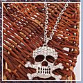 Stylish Skull Alloy with Drill Sweater Chain S01655