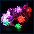 Long Lotus Colorful LED Light String Lamp 2.5m 20pcs J03555