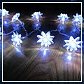 White Lotus Battery Powered LED Lights HK-J02723