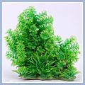 Aquarium Hornwort Aquatic Submerged Plants 8003 P48779