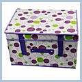Bubble Waterproof Storage Case Box Purple Border J02604