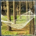 Cotton Rope Hammock Bed K00167